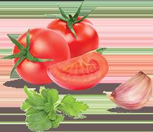 Molhos caseiros com tomate